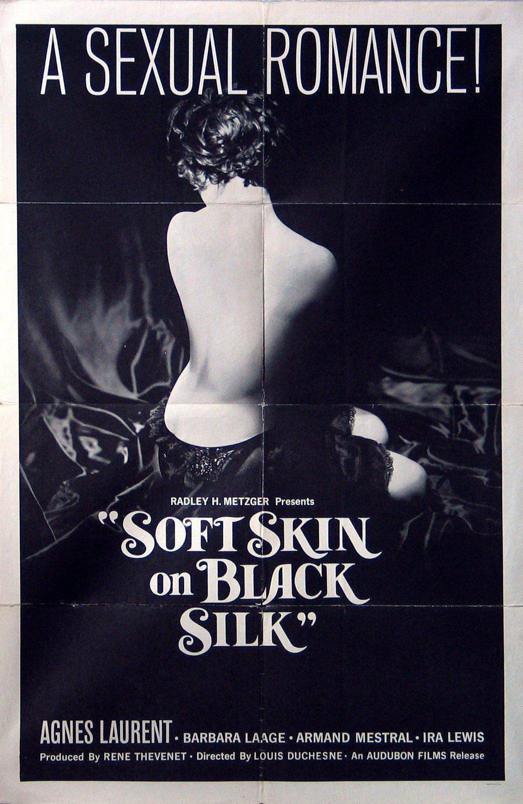 Soft Skin on Black Silk 1 Sheet (27x41) Original Vintage Movie Poster