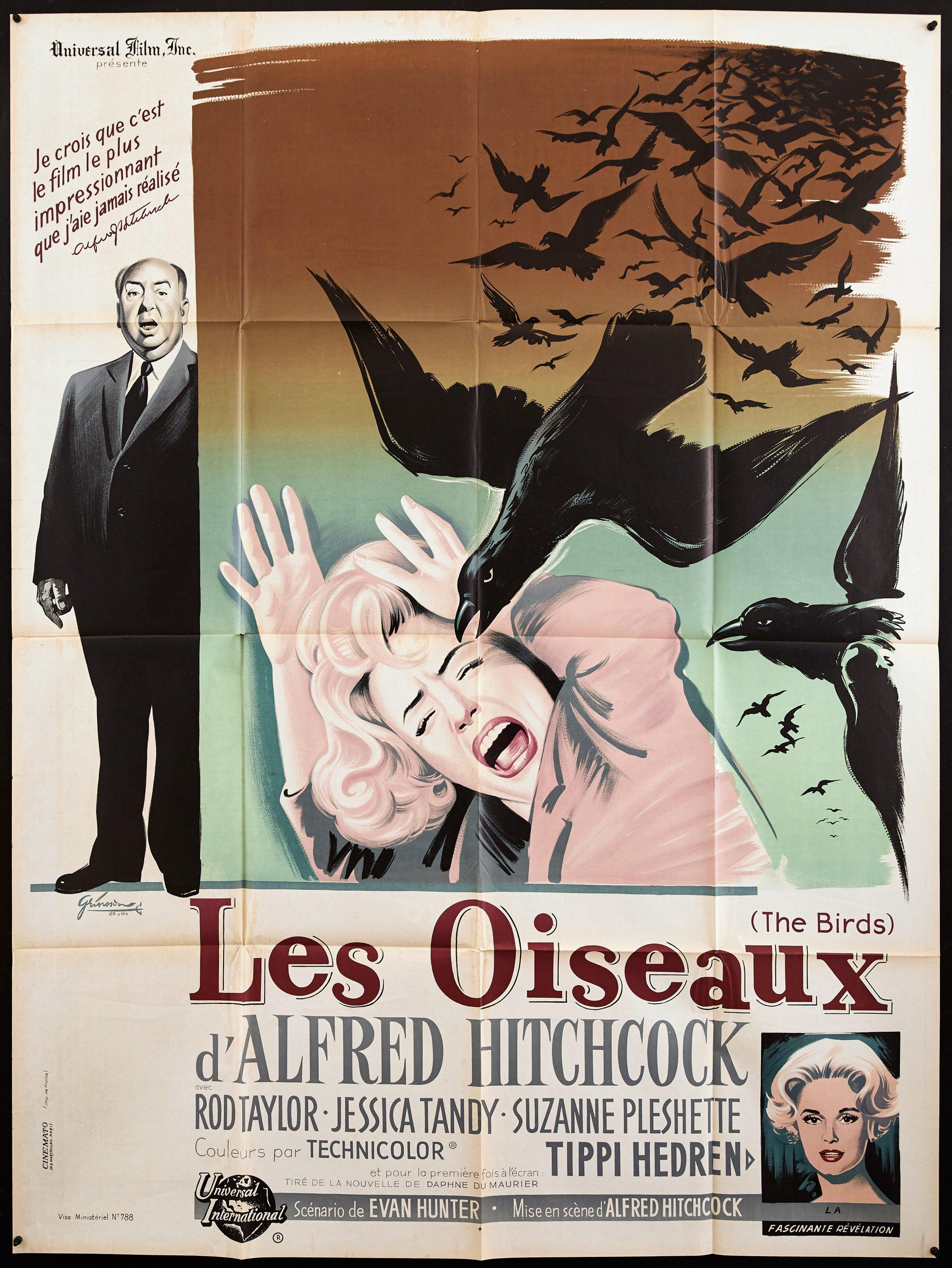 The Birds French 1 panel (47x63) Original Vintage Movie Poster
