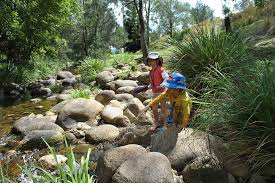 children hunting in stream whilst camping