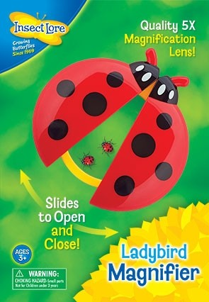 Ladybird Magnifier, children's magnifying toy for camping
