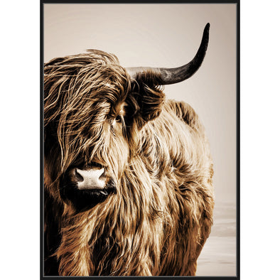Himalayan Cattle Framed Canvas Print