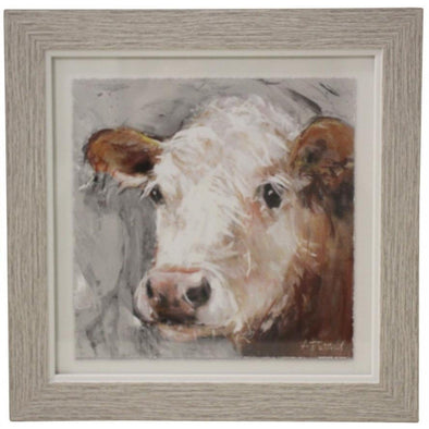 Framed Print Duke Cow