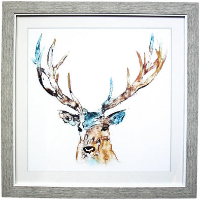 Framed Deer Water Colour