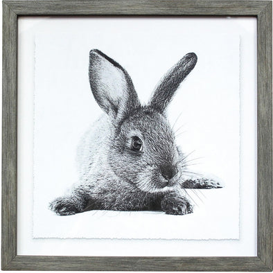 Framed Bunny Print-Whiskers