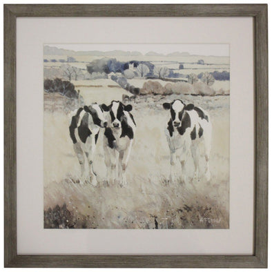 Framed Print Grazing Cows