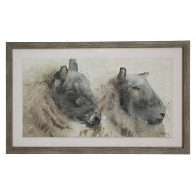 Framed Sheep Water Colour Print