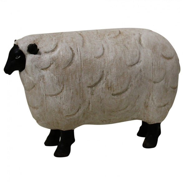 Black & White Sheep