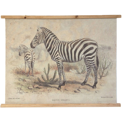 Vintage Zebra Wall Art