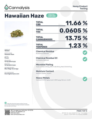Hawaiian Haze Strain Blue Ridge Flower - Pound
