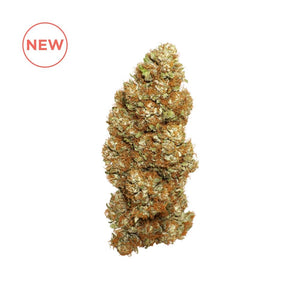 Hawaiian Haze Strain Blue Ridge Selects Flower (New)