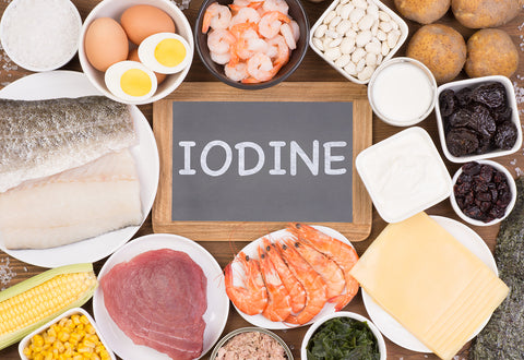Iodine For Practitioners : Training Program
