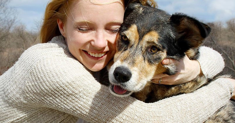 The Ultimate Guide To Pet Adoption: Sneak Preview