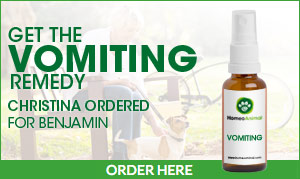 Vomiting Homeopathic remedy for animals