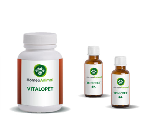 VITALOPET - ADVANCED KIT