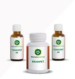 BRAINPET - OPTIMAL KIT