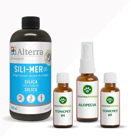 ALOPECIA - ADVANCED KIT