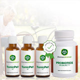 "Ultimate ""Bronchitis"" Remedy MAXIMIZER PACK - HomeoAnimal.com"
