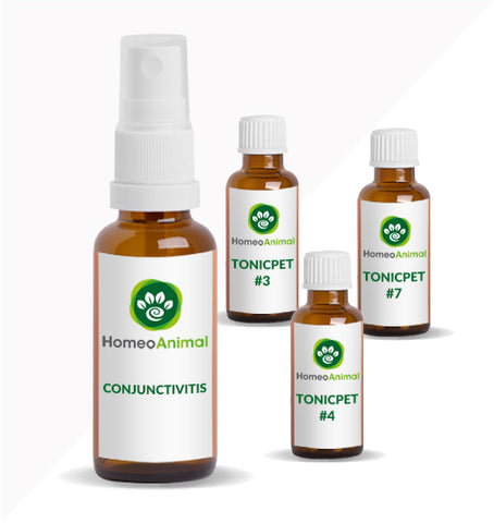 CONJUNCTIVITIS - ADVANCED KIT