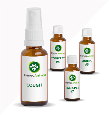 COUGH - ADVANCED KIT