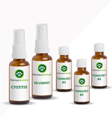 CYSTITIS - OPTIMAL KIT