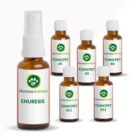 ENURESIS - OPTIMAL KIT