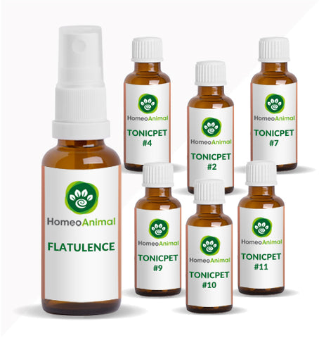 FLATULENCE - ADVANCED KIT