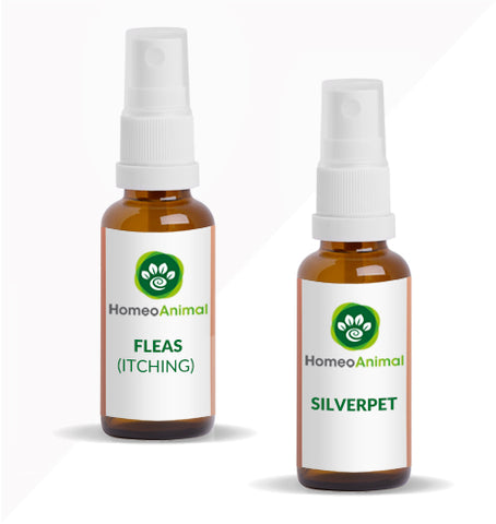 FLEAS (ITCHING) - ADVANCED KIT