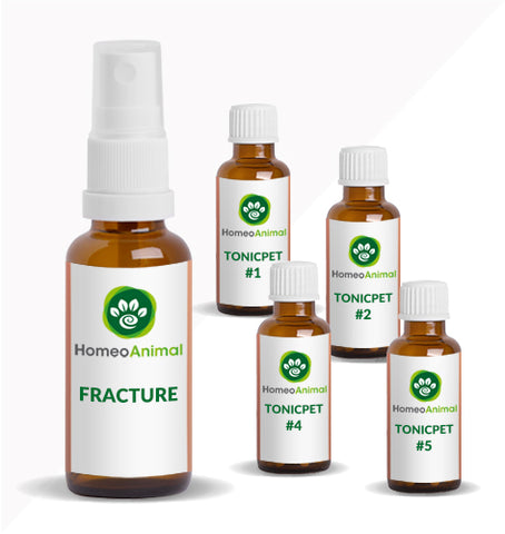 FRACTURE - ADVANCED KIT