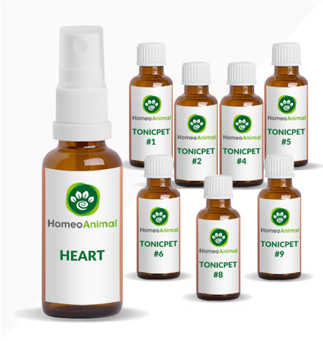 HEART - OPTIMAL KIT