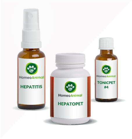 HEPATITIS - ADVANCED KIT
