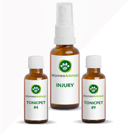 INJURY - ADVANCED KIT