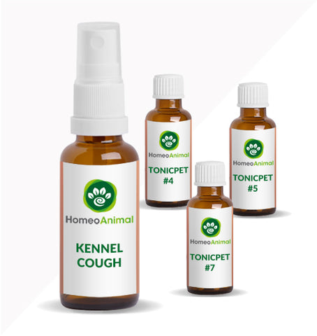 KENNEL COUGH - ADVANCED KIT