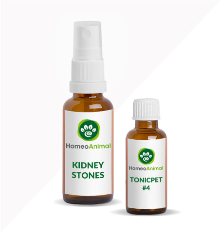 KIDNEY STONES - ADVANCED KIT