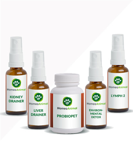 LYMPH 2 - OPTIMAL KIT