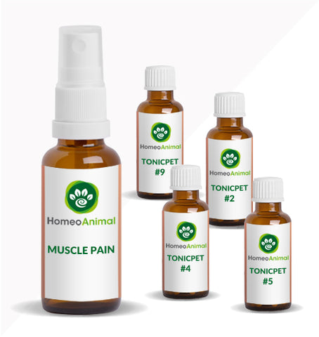 MUSCLE PAIN - ADVANCED KIT