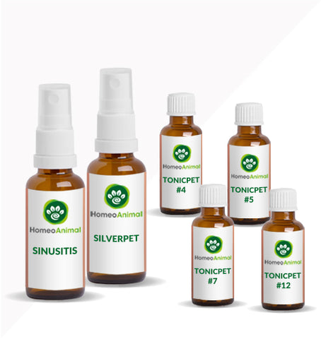 SINUSITIS - OPTIMAL KIT