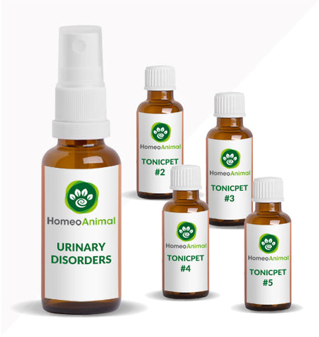 URINARY DISORDERS - ADVANCED KIT