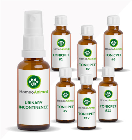 URINARY INCONTINENCE - OPTIMAL KIT