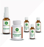 BLOOD SUGAR SUPPORT - OPTIMAL KIT