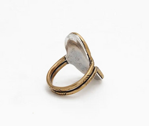 Mixed Metal Reflecting Pool Ring