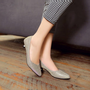 Pointed Toe Women Pumps Spike Shoes Low Heels 5684