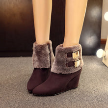 Load image into Gallery viewer, Pointed Toe Ankle Boots Wedges Shoes Fall|Winter 6270
