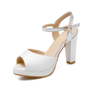 Women Sandals Ankle Straps Chunky Heel Pumps Platform High-heeled Shoes
