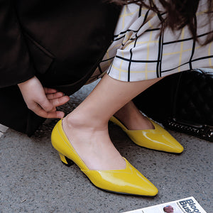 Pointed Toe Shallow Mouth Women Middle Heels Pumps