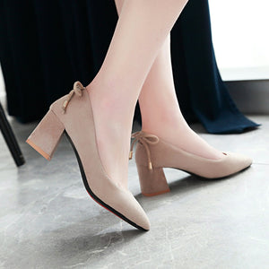 Pointed Shallow-mouth High-heeled Block Heel Pumps