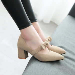 Pointed Toe Bow Chunky Heel Pumps