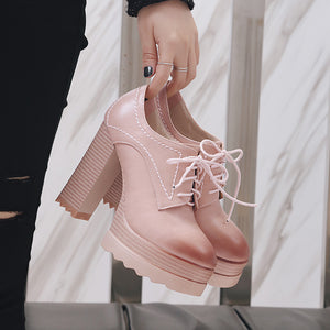 Lace Up Ultra-high Heel Platform Shoes