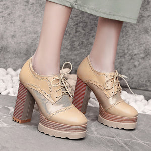 Lace Up Platform High Heel Shoes