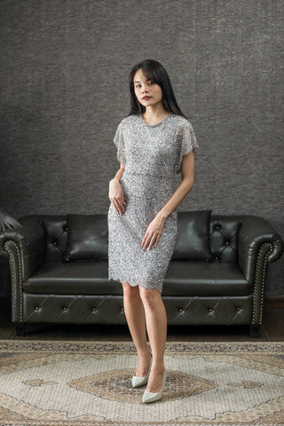 Short Ali Dress in Silver