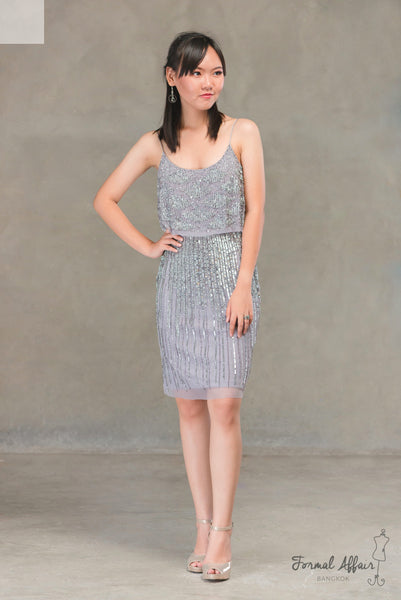 Short Angela Dress in Silver - The Formal Affair